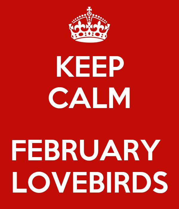 KEEP CALM  FEBRUARY  LOVEBIRDS