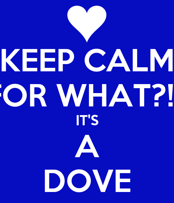 KEEP CALM FOR WHAT?!? IT'S A DOVE