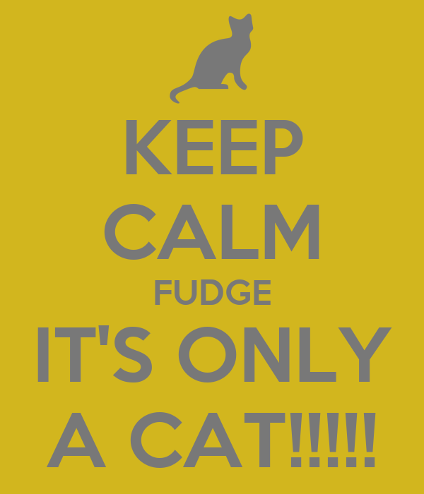 KEEP CALM FUDGE IT'S ONLY A CAT!!!!!