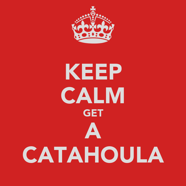 KEEP CALM GET A CATAHOULA