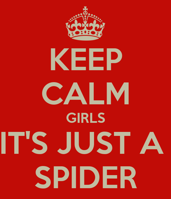 KEEP CALM GIRLS IT'S JUST A  SPIDER