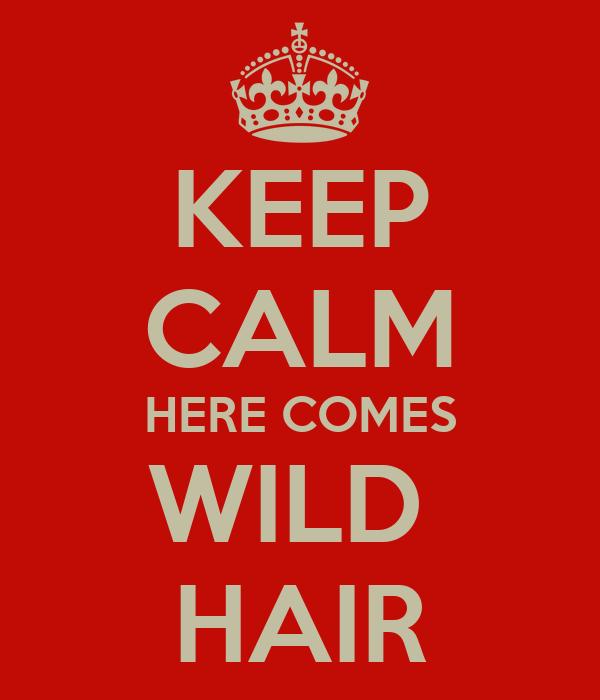 KEEP CALM HERE COMES WILD  HAIR