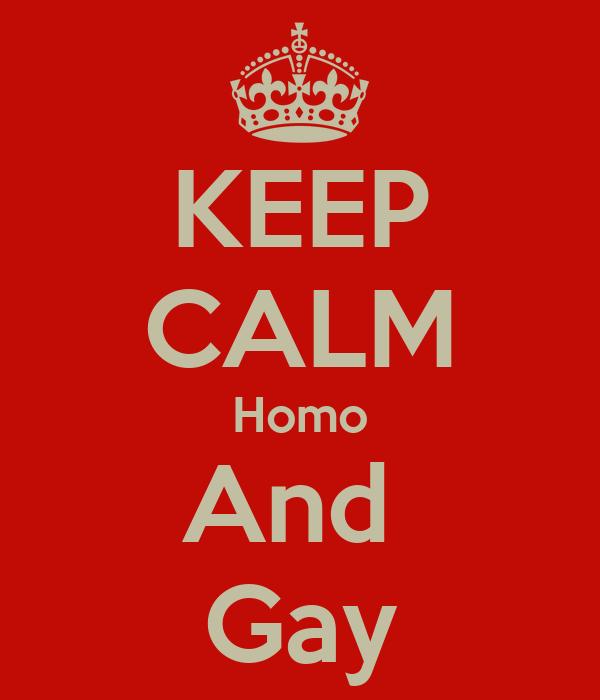 KEEP CALM Homo And  Gay