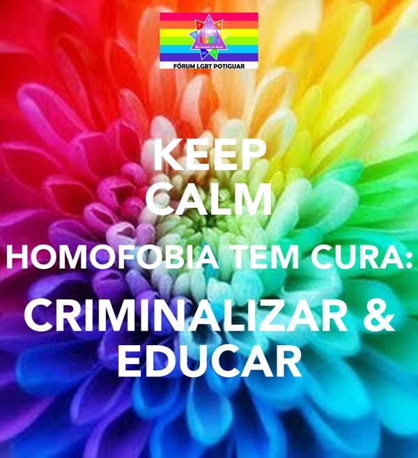 KEEP CALM HOMOFOBIA TEM CURA: CRIMINALIZAR & EDUCAR