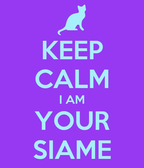 KEEP CALM I AM YOUR SIAME
