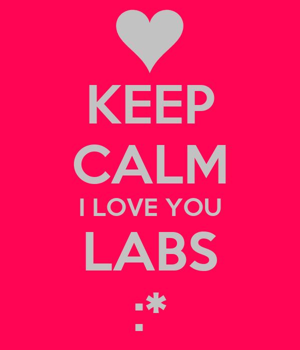 KEEP CALM I LOVE YOU LABS :*