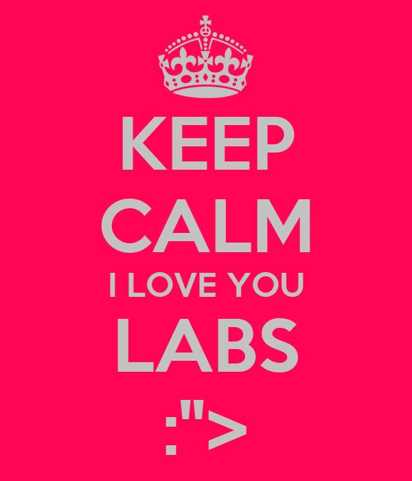 "KEEP CALM I LOVE YOU LABS :"">"