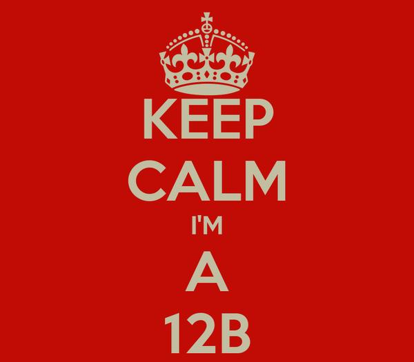 KEEP CALM I'M A 12B