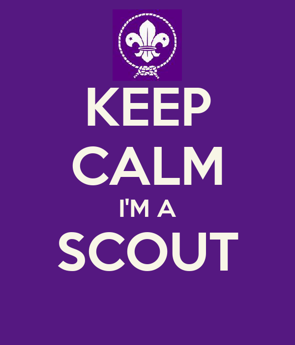 KEEP CALM I'M A SCOUT