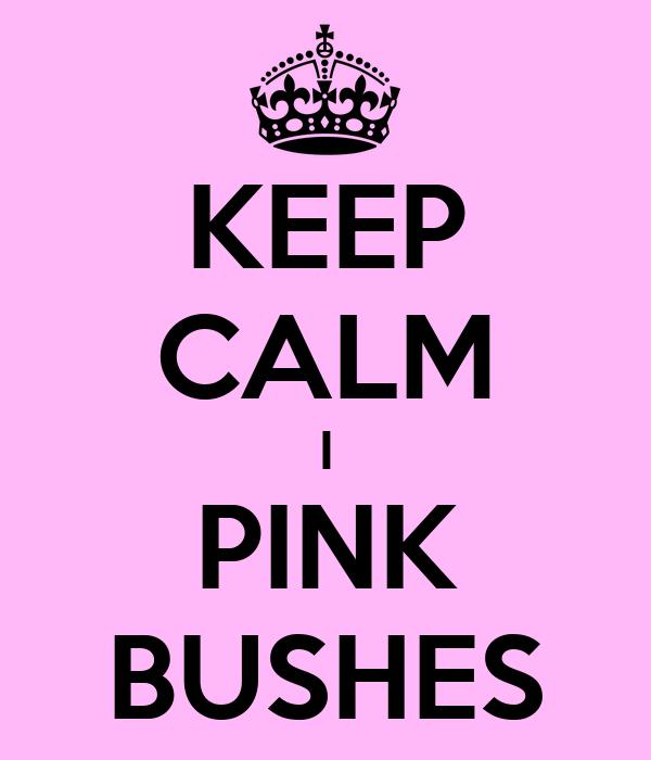 KEEP CALM I PINK BUSHES