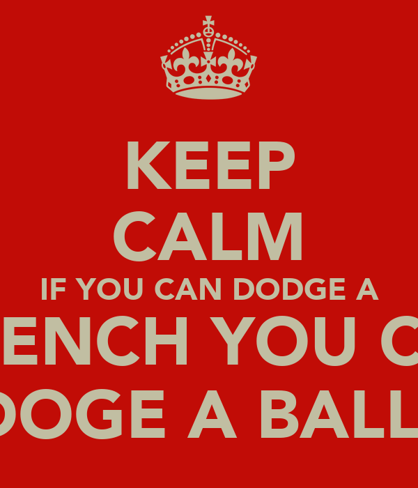 KEEP CALM IF YOU CAN DODGE A WRENCH YOU CAN DOGE A BALL!