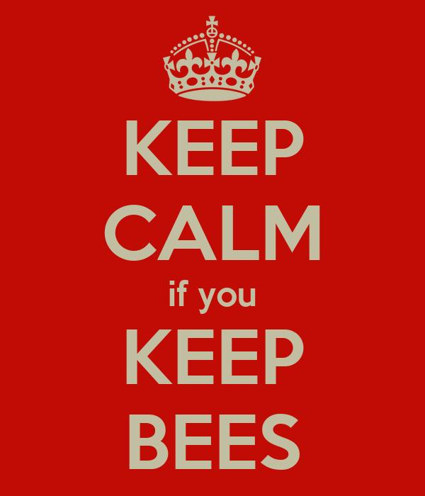 KEEP CALM if you KEEP BEES