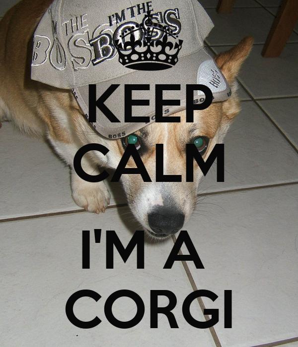 KEEP CALM  I'M A  CORGI