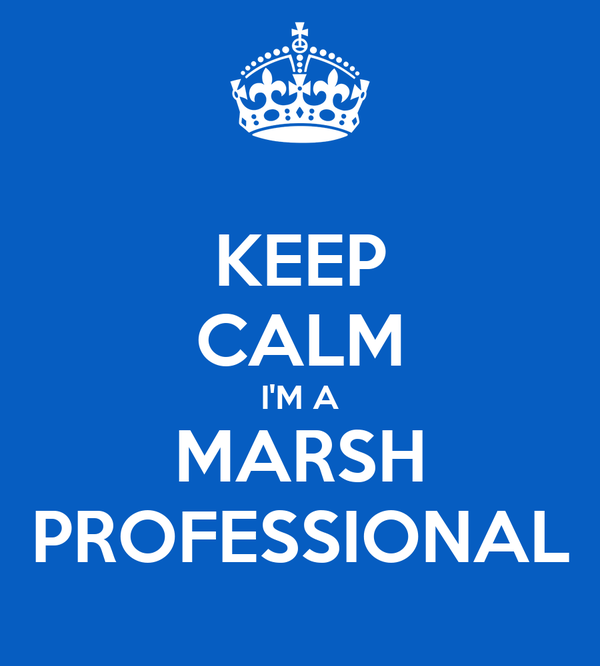 KEEP CALM I'M A MARSH PROFESSIONAL