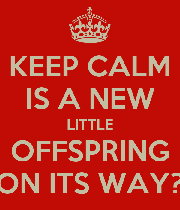 KEEP CALM IS A NEW LITTLE OFFSPRING ON ITS WAY?