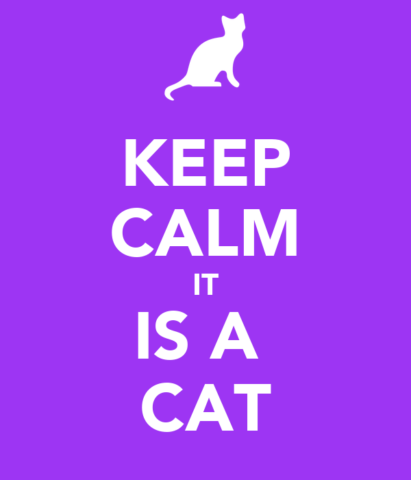 KEEP CALM IT IS A  CAT