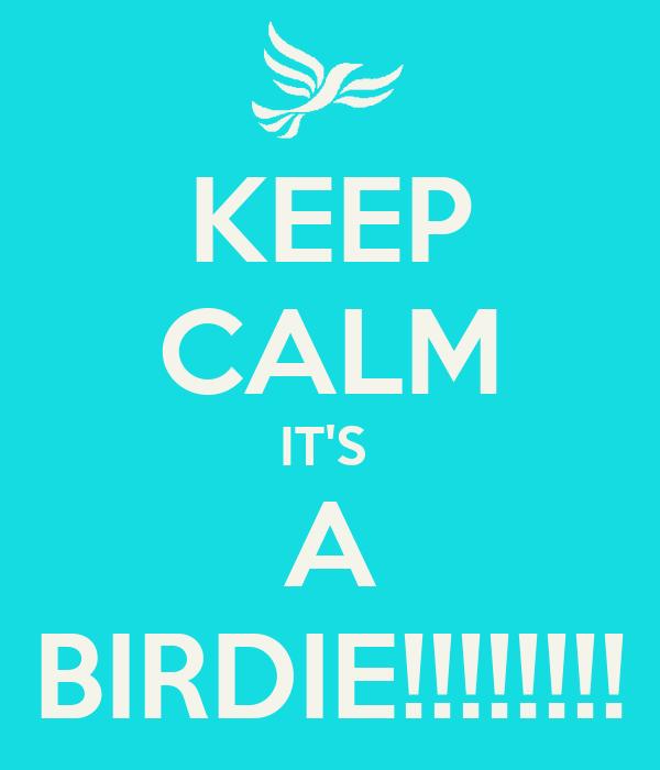 KEEP CALM IT'S  A BIRDIE!!!!!!!!