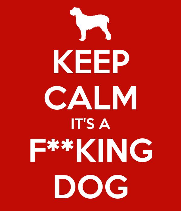 KEEP CALM IT'S A F**KING DOG