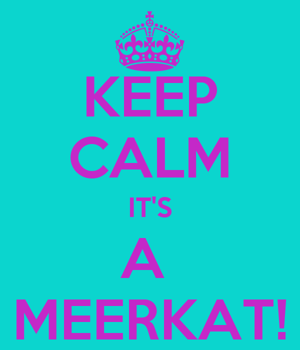 KEEP CALM IT'S A  MEERKAT!