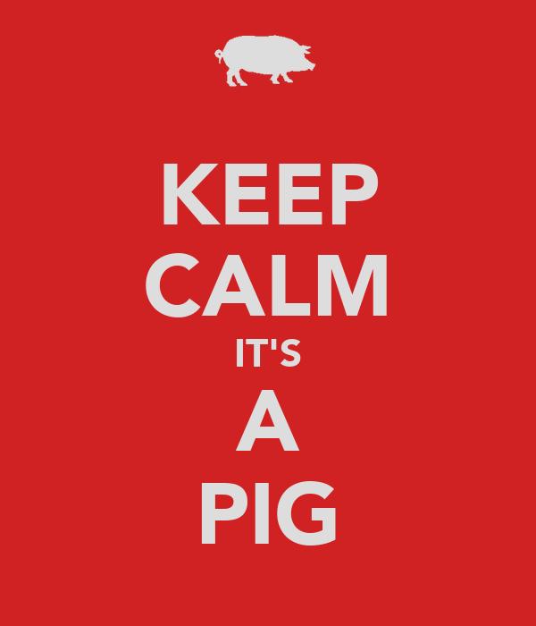 KEEP CALM IT'S A PIG