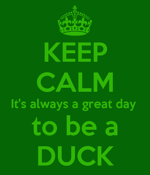 KEEP CALM It's always a great day  to be a DUCK