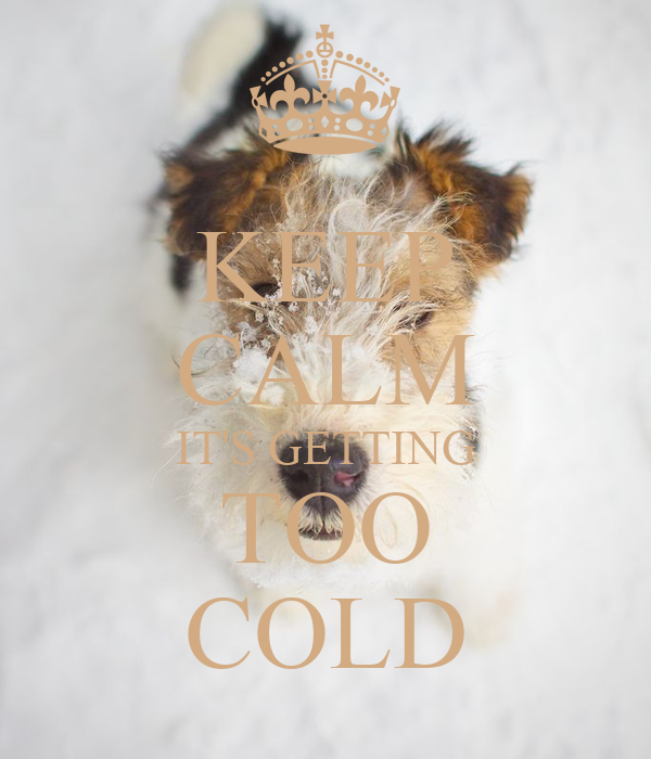KEEP CALM IT'S GETTING TOO COLD