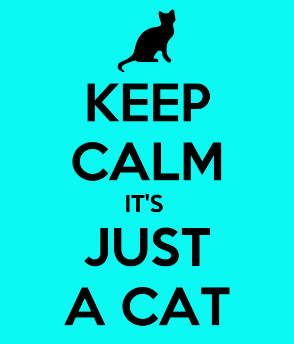 KEEP CALM IT'S  JUST A CAT
