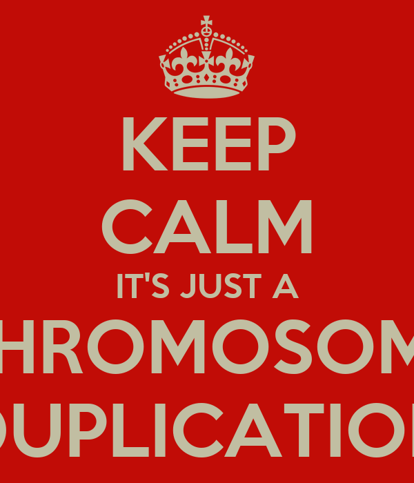 KEEP CALM IT'S JUST A CHROMOSOME DUPLICATION