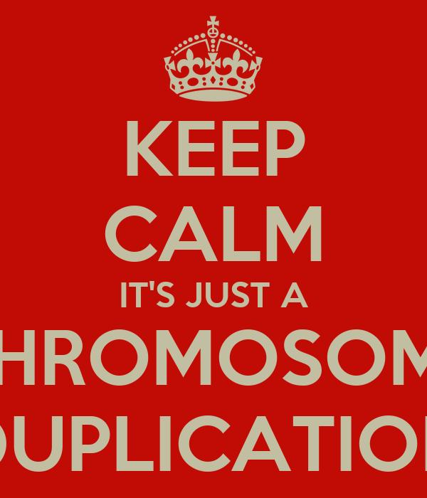 KEEP CALM IT'S JUST A CHROMOSOME DUPLICATION