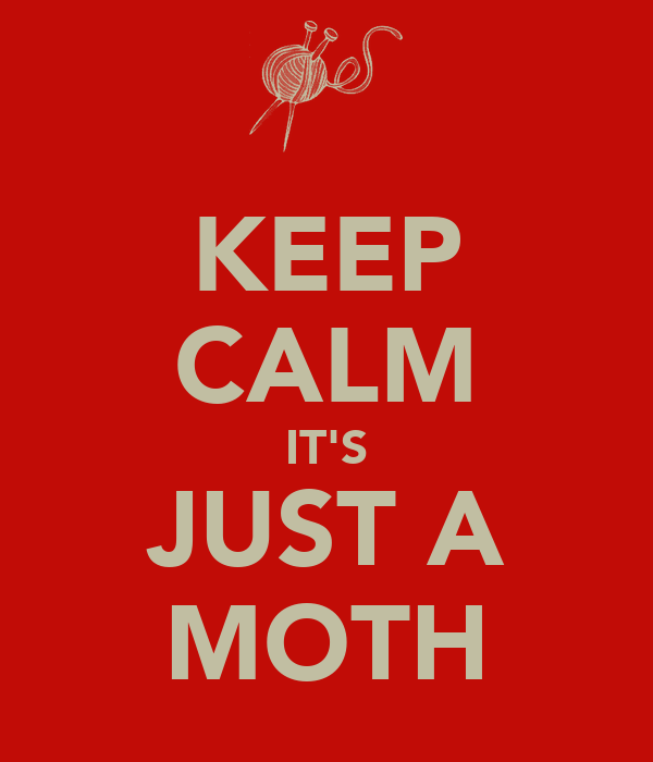 KEEP CALM IT'S JUST A MOTH