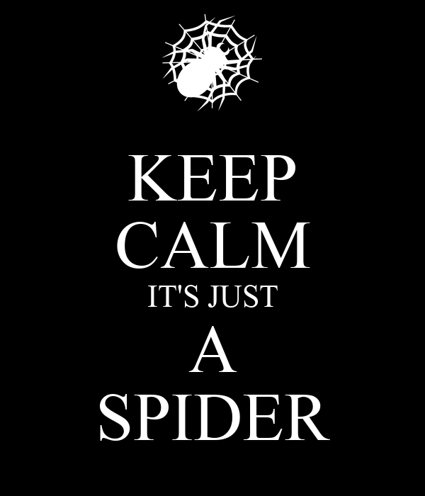 KEEP CALM IT'S JUST A SPIDER