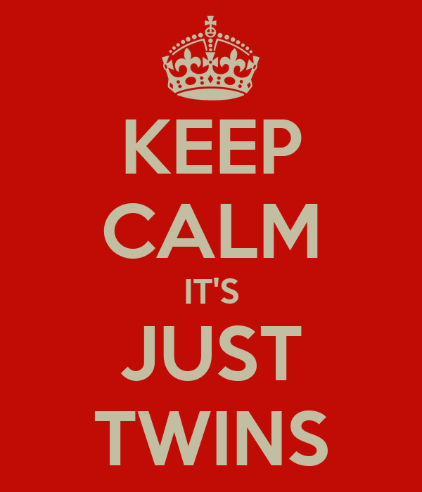 KEEP CALM IT'S JUST TWINS