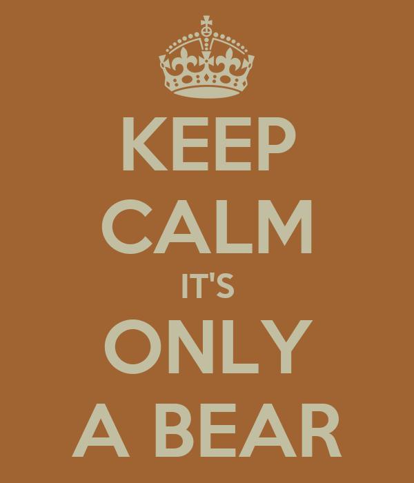 KEEP CALM IT'S ONLY A BEAR