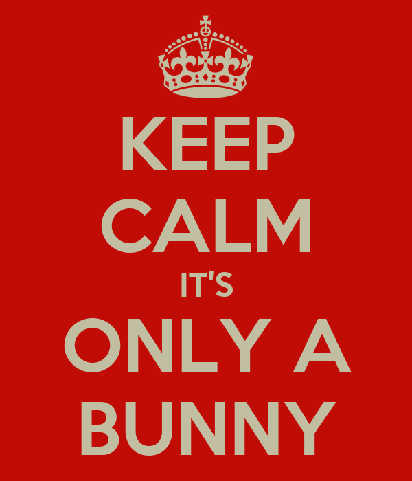 KEEP CALM IT'S ONLY A BUNNY