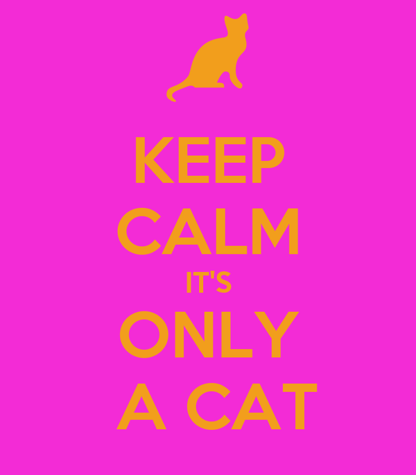 KEEP CALM IT'S ONLY  A CAT
