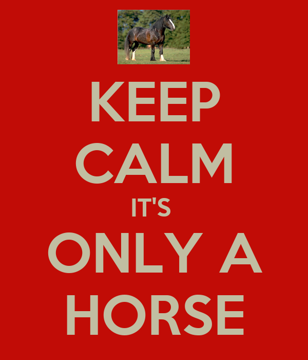 KEEP CALM IT'S  ONLY A HORSE