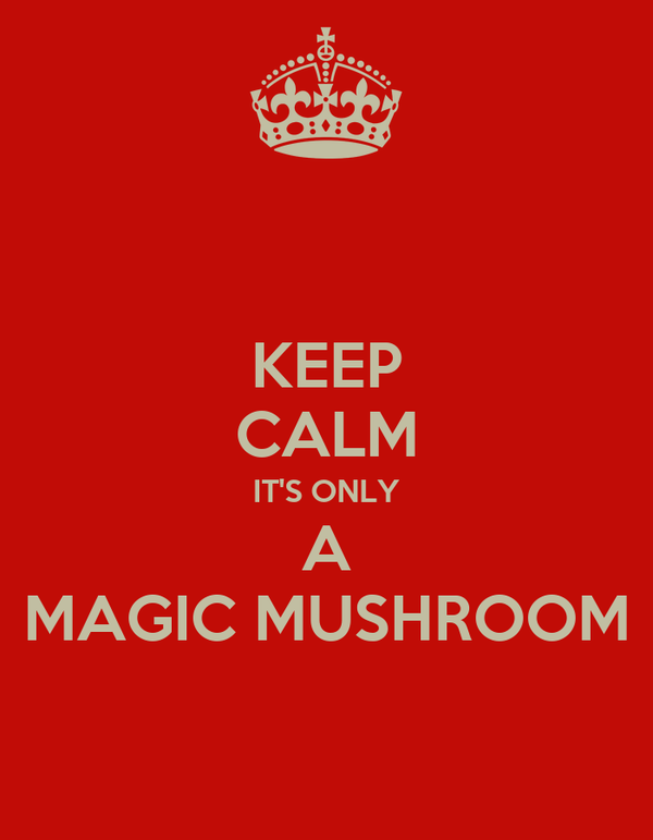 KEEP CALM IT'S ONLY A MAGIC MUSHROOM