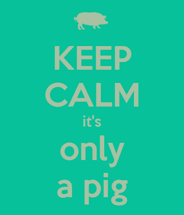 KEEP CALM it's only a pig
