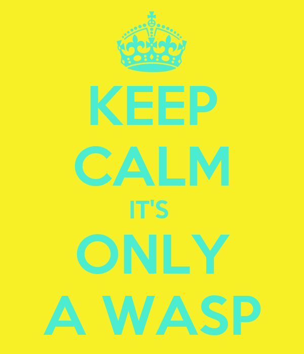 KEEP CALM IT'S  ONLY A WASP