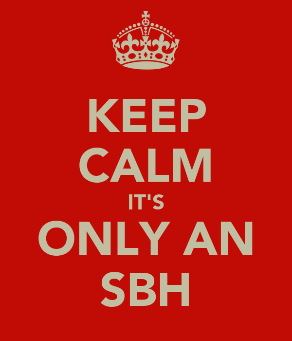 KEEP CALM IT'S ONLY AN SBH