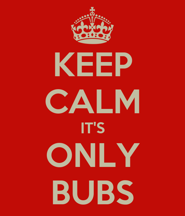 KEEP CALM IT'S ONLY BUBS