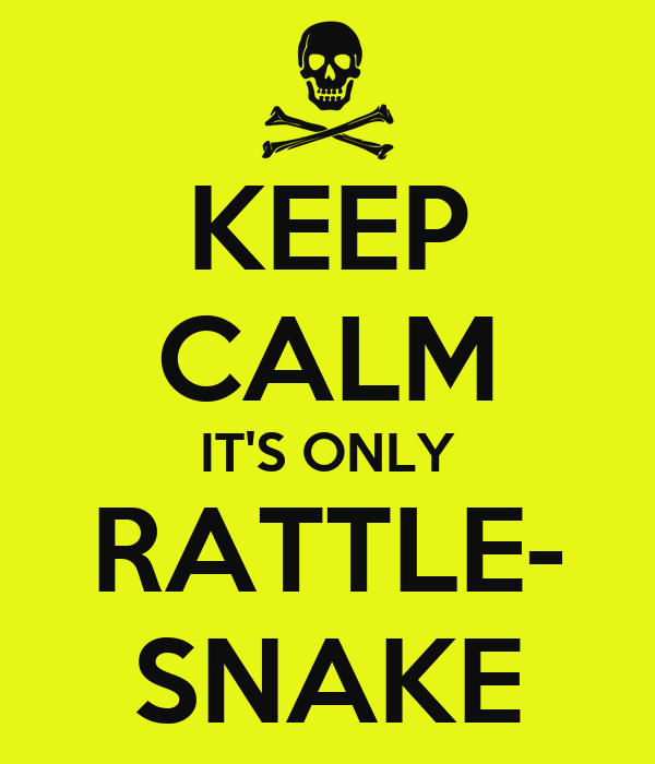 KEEP CALM IT'S ONLY RATTLE- SNAKE