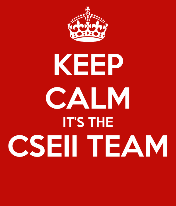 KEEP CALM IT'S THE CSEII TEAM