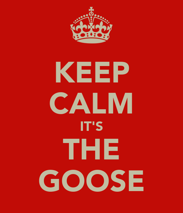 KEEP CALM IT'S THE GOOSE