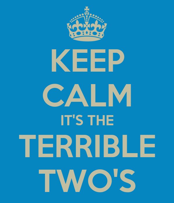 KEEP CALM IT'S THE TERRIBLE TWO'S