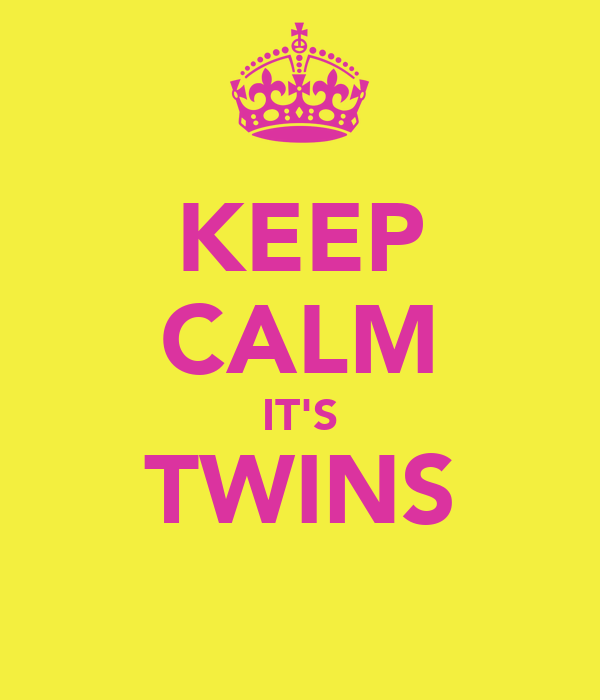 KEEP CALM IT'S TWINS