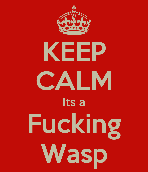 KEEP CALM Its a Fucking Wasp