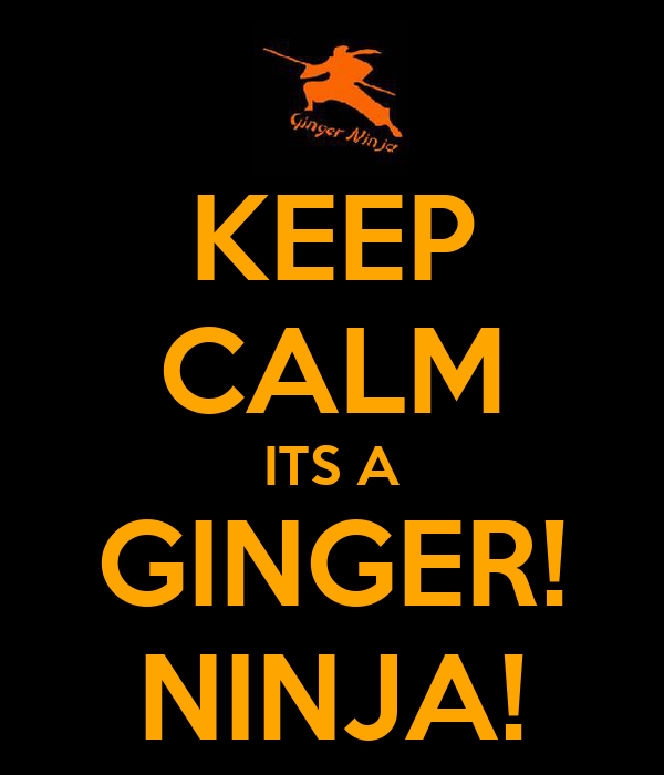 KEEP CALM ITS A GINGER! NINJA!