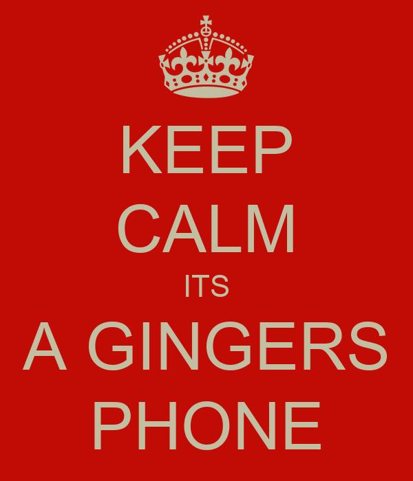 KEEP CALM ITS A GINGERS PHONE