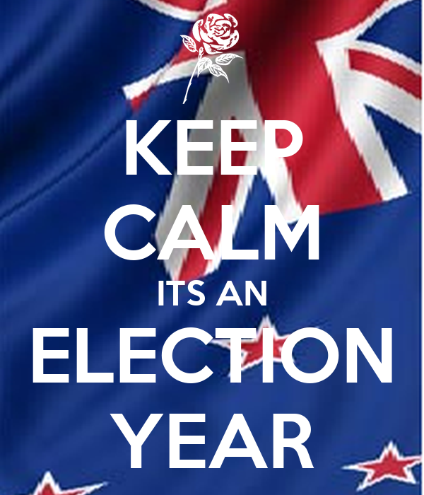 KEEP CALM ITS AN ELECTION YEAR